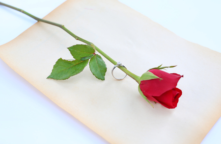 Red roses flower with wedding ring on old brown paper against white background.