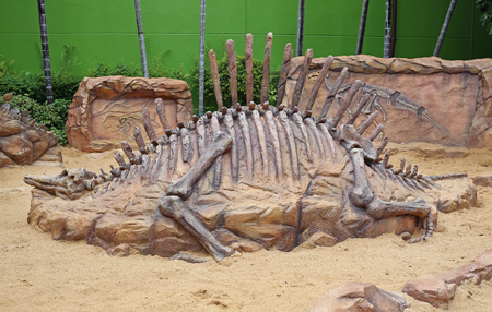 replica dinosaur fossil on the sand ground Editöryel