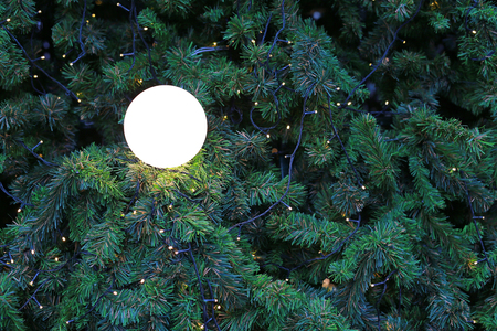 Christmas pine tree with light for Xmas background. Imagens - 115742805