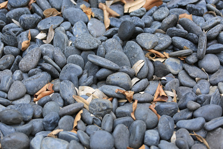 Black gravel pebble with dried leaf for Background.