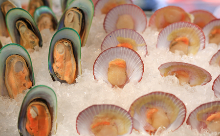 Fresh Mussels and Scallop on ice. 免版税图像