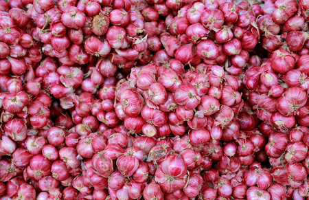 Red onion background in the market thailand.
