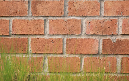 Brick wall texture background with grass. 版權商用圖片