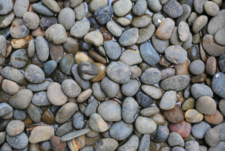 Pebble stone in water. Spa background concept.