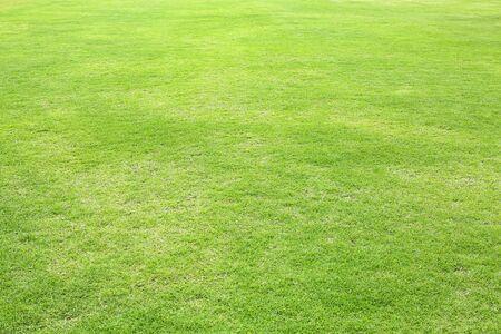 Natuurlijke groene bijgesneden grasveld achtergrond voor sport. Stockfoto