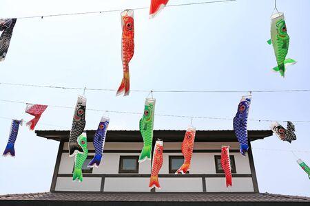 Japanese koi carp flag decoration blow in the wind. Carp streamer.