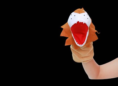 Hand wearing Lion puppets isolated on black background, Lion head.