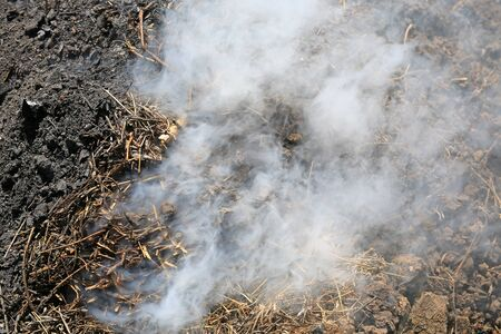 Smoke from charcoal in a traditional manner forest. Stock Photo