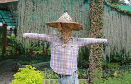 Scarecrow in a farm thailand. Foto de archivo