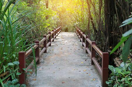 Old cement bridge with sunlight