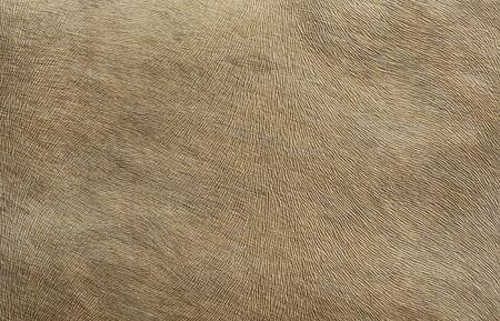 Upholstery fabrics that mimic the leather Standard-Bild