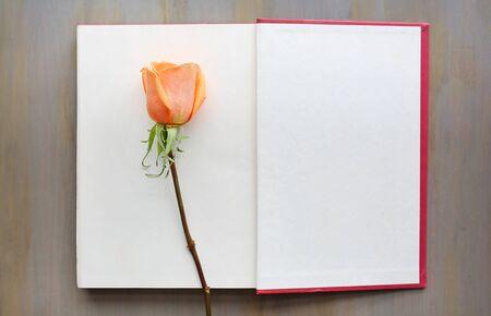 Flor color de rosa en libro abierto sobre fondo de madera.