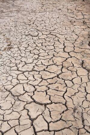 Tierra agrietada y suelo seco Foto de archivo