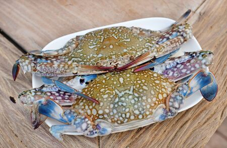 Fresh horse crab on white plate