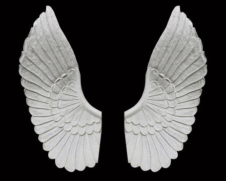 Angel wing isolated on black background Фото со стока - 131137314