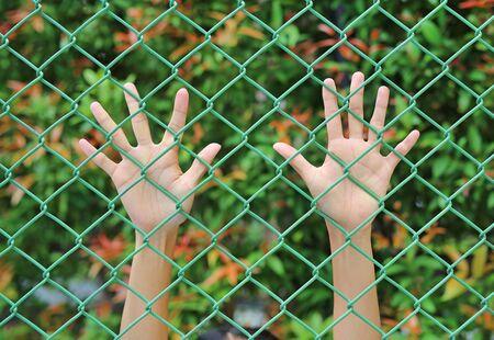 Female Hands touching iron mesh Imagens