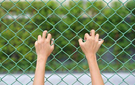 Female Hands touching iron mesh