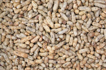 Fresh peanuts with soil after harvesting for background.