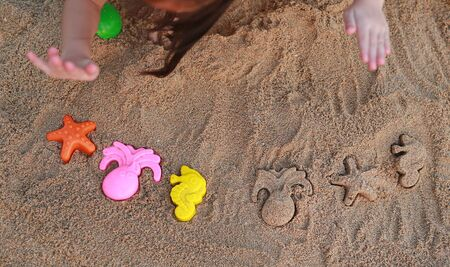 Close-up children hands playing sand with animal block forming at beach. Фото со стока - 135367851