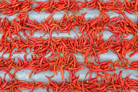 Hot chilli is drying on old zinc sheets.