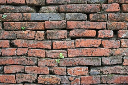 Background of crack brick wall texture