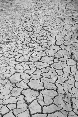 Crack earth and dry soil. Black and white tone.