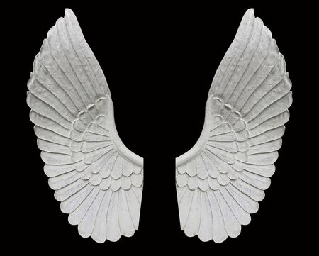 Angel wing isolated on black background