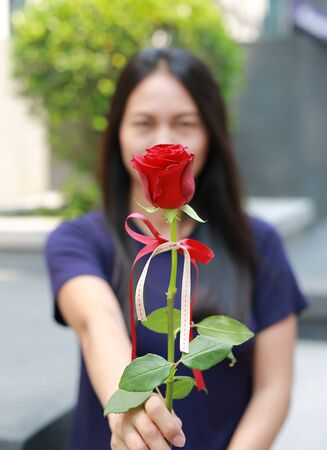 Beautiful Asian woman giving the rose for you. Focus at the flower.
