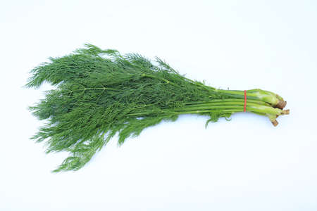 Fresh of green dill bunch isolated on white background.