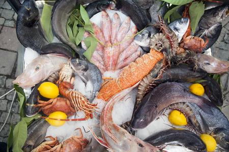 fisch eis: Fisch Ice Lebensmittel Frischer Fisch ein Dutzend zusammen auf Eis Schalen zum Verkauf angeboten werden. Lizenzfreie Bilder