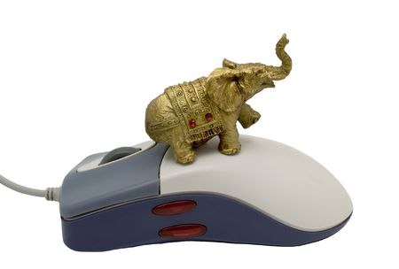 The elephant sitting on a computer mousy on a white background. Photo. Stock Photo