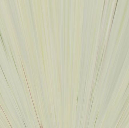 Abstract linear color background. Illustration. illustration