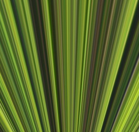 Abstract linear color background. Illustration.