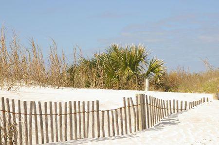 Tropical beach fence photo