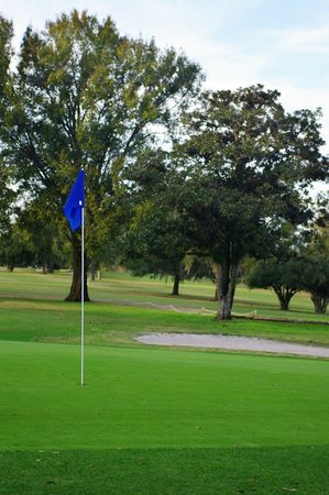 cut the competition: Golf flag