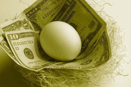 nestegg: Egg in nest with money
