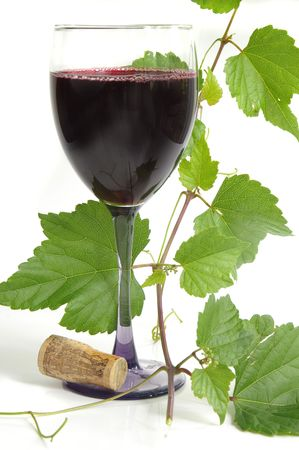 wine with grapevine
