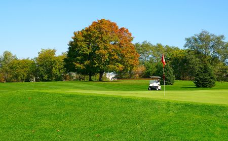 Golf course green and golf cart Stock Photo - 652039