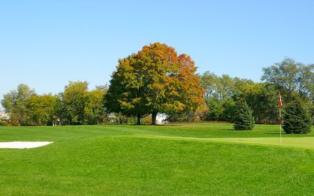 Golf course green and fairway Stock Photo - 652040