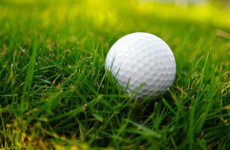 pelota de golf: Pelota de golf en el c�sped  Foto de archivo