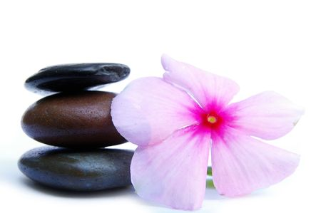 Smooth stones with pink flower on white photo