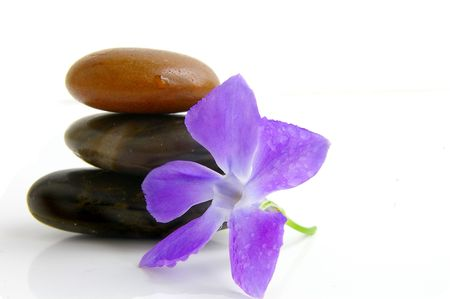 dewey: Smooth stones stacked with dewey purple flower Stock Photo