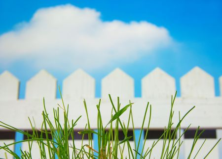 White picket fence and sky with green grass photo