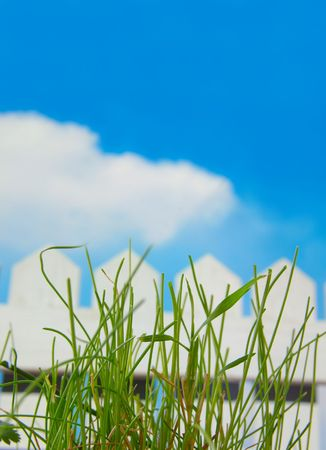 White picket fence and sky and green grass Stock Photo - 717516