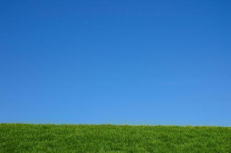 緑の草が茂った丘と青空