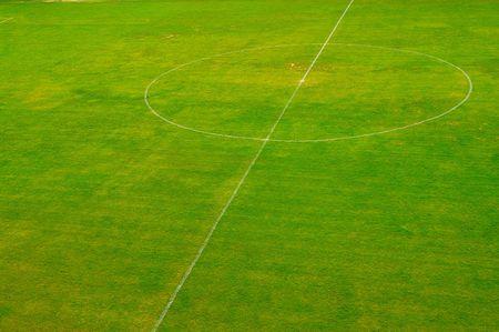 Empty green soccer  football field