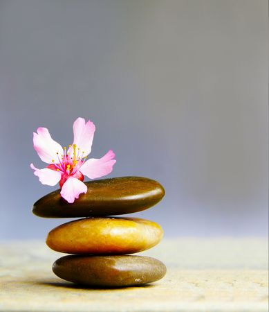 Small pink flower atop three stacked stones Stock Photo
