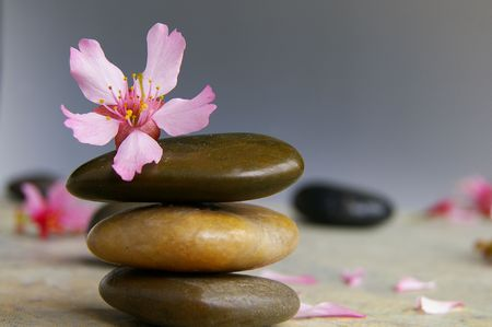 Three stacked stones, flower and pink petals