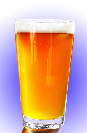 Full pint of amber beer with head, on white-blue background Imagens