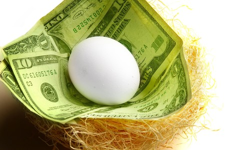 nestegg: nest-egg concept ( egg in nest of cash ) Stock Photo